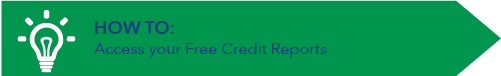 How to access your free credit report