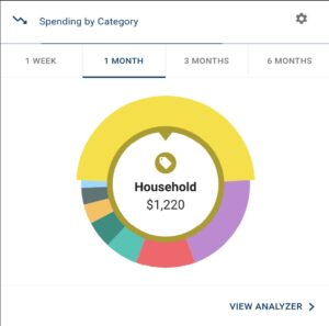 Money Manager - See your spending by category